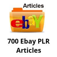 700 Ebay PLR Articles