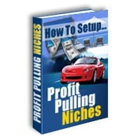 How To Setup Profit Pulling Niches